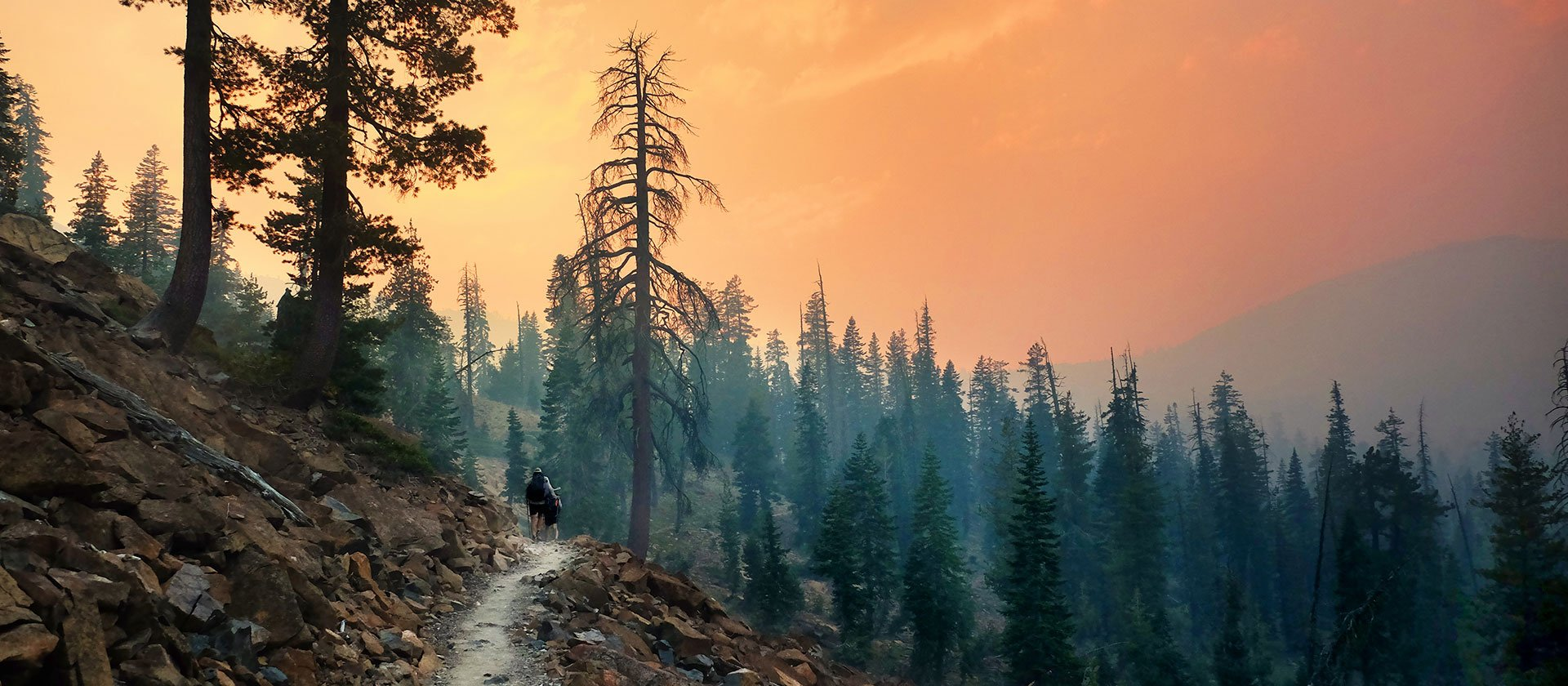 Trail closures - Pacific Crest Trail Association