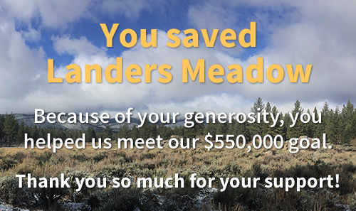 Save Landers Meadow, Donate by August 1st.  Your gifts will be doubled.