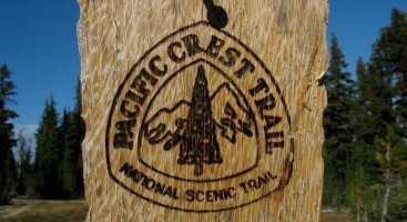 PCT emblem. Photo by Jack Haskel