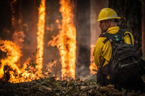 Untold thousands of wildland firefighters have worked over the years on the Pacific Crest Trail. [USDA Photo by Lance Cheung]