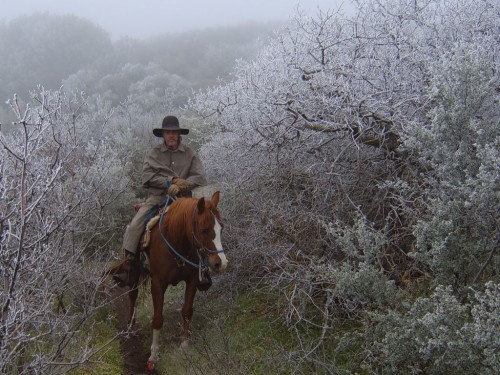 A rider braves chilly weather. Photo by Mary Bays