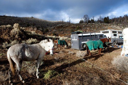 Horse trailers on the Pacific Crest Trail. Photo by Chris Ryerson