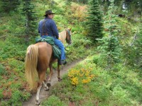 2013 Photo Contest - Equestrian - Third Place In early fall, a day ride is a plethora of colors just north of Mount Adams, Wash.  Photo by: Katrin Katterman