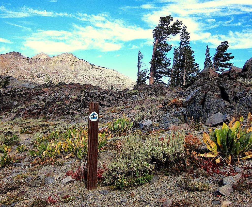 The Tahoe Sierra.
