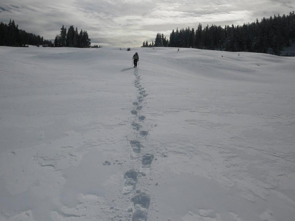 PCT_winter_thruhike_Justin_Lichter_Shawn_Forry_18
