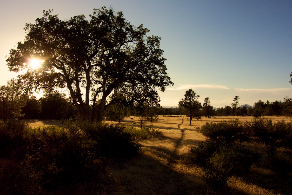 The trail winds through Grasslands near the town of Burney. Northern, California