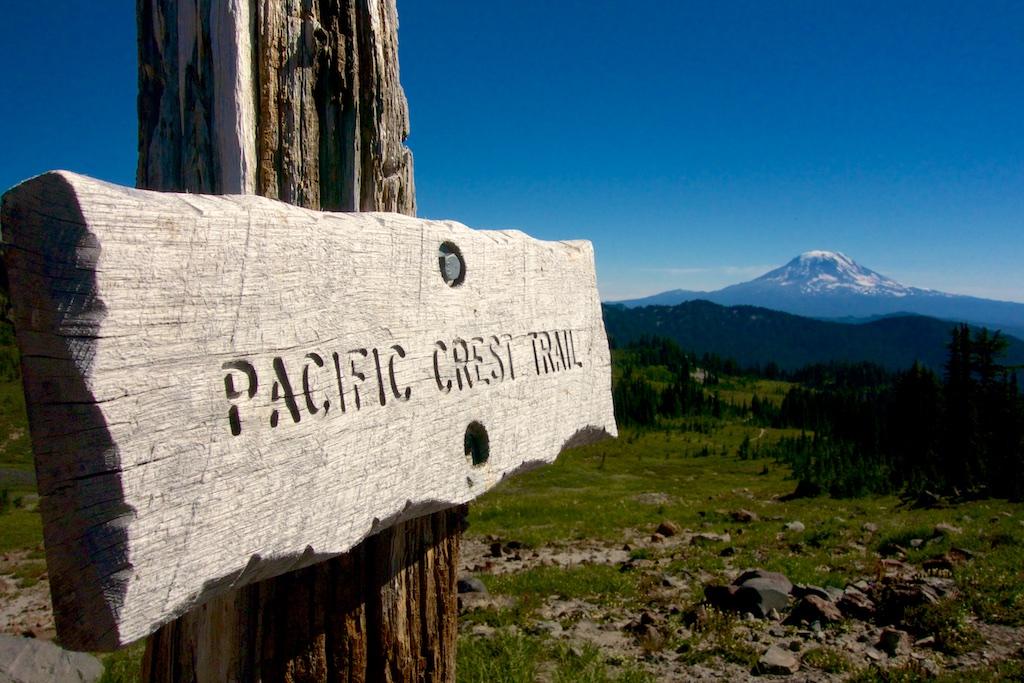 Facing Mount Adams. Washington State