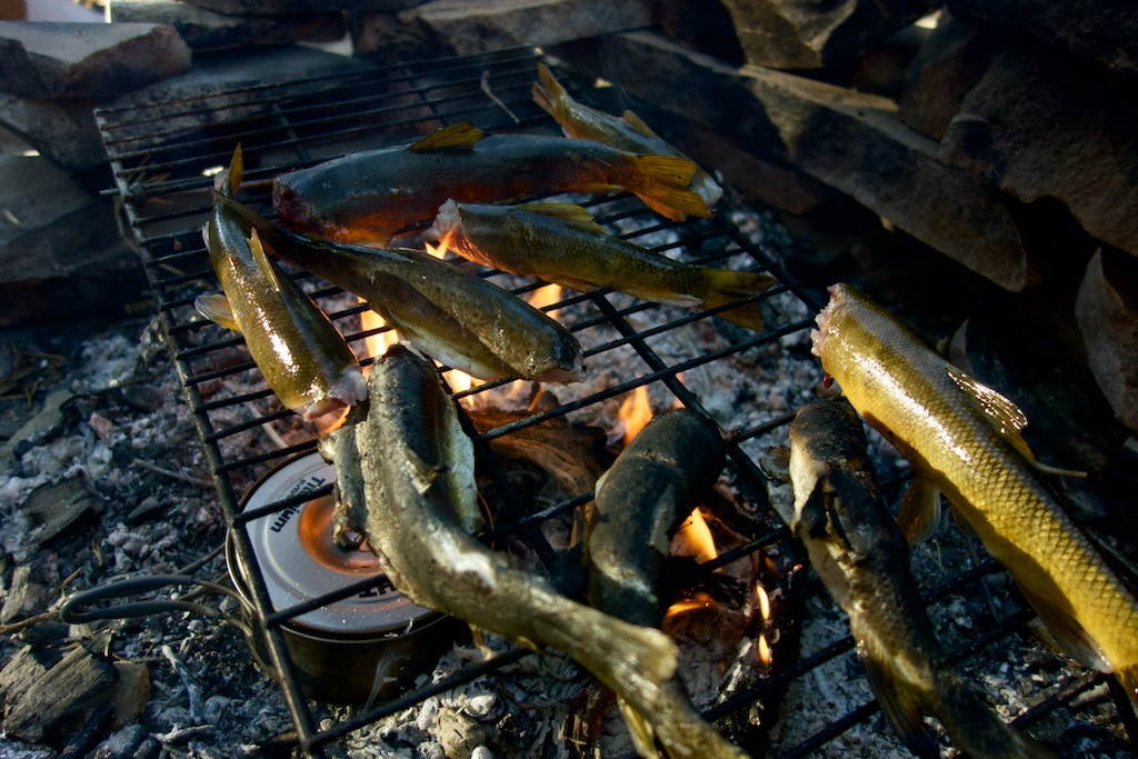 A meal of fresh caught trout is a welcome break from rehydrated dinners and granola bars. High Sierra, California