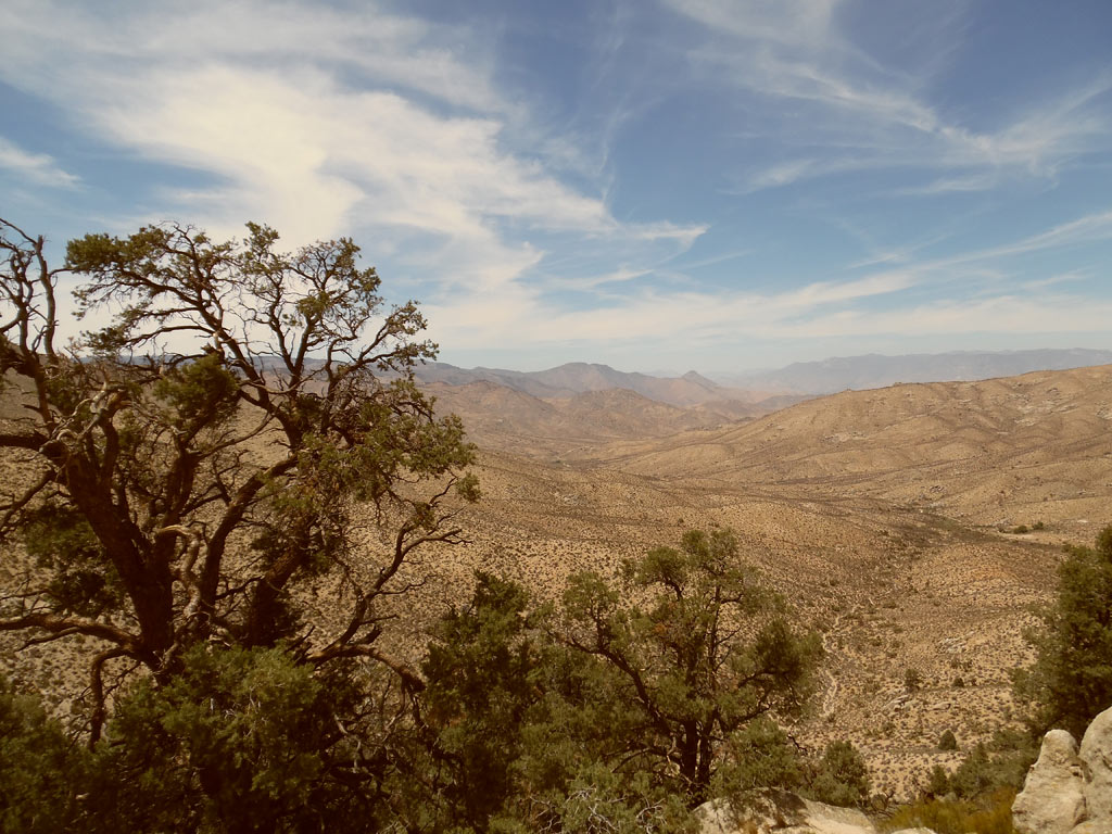 Kelso Canyon, Pacific Crest Trail.