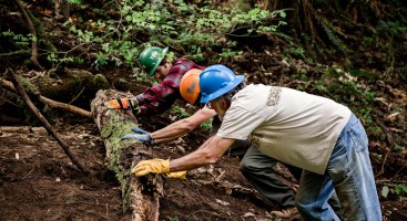 Practicing trail decommissioning. Photo: Grey Feather Photography.