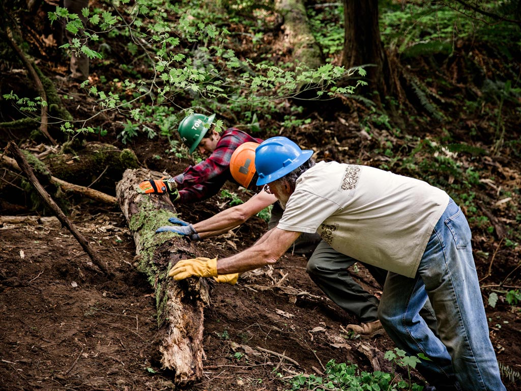 Practicing trail decommissioning. Photo: Gray Feather Photography.