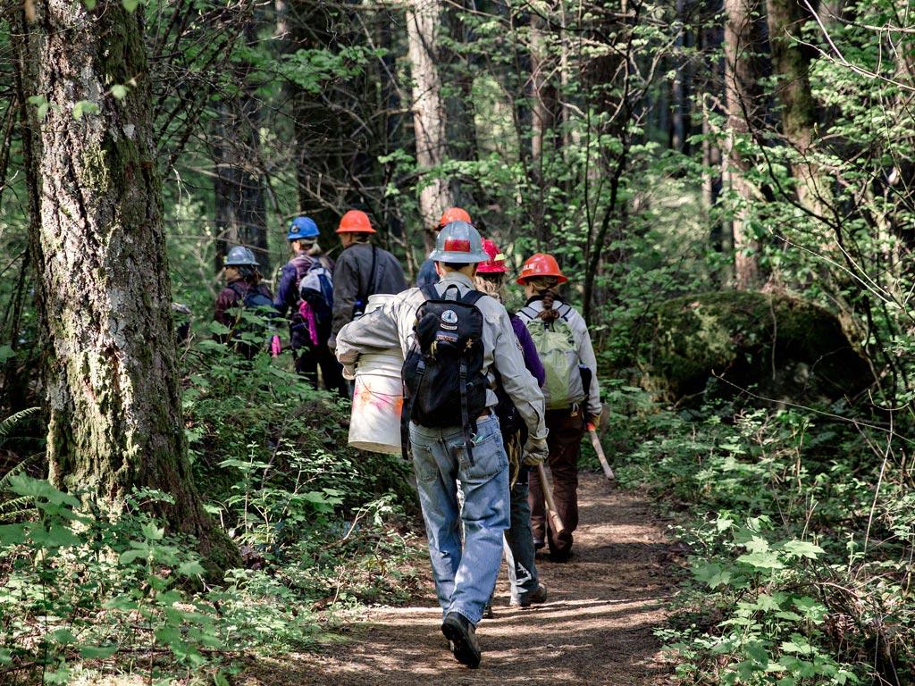 trail-crew-volunteer-pct