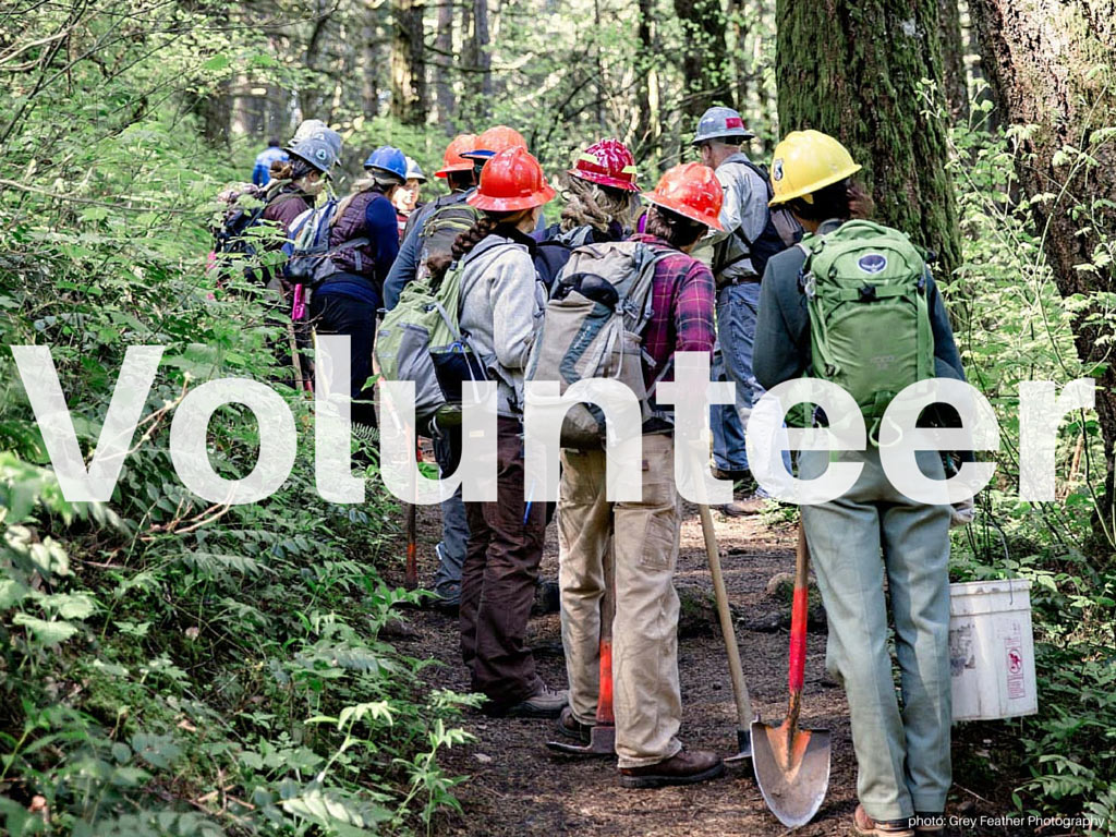 Volunteer on the Pacific Crest Trail
