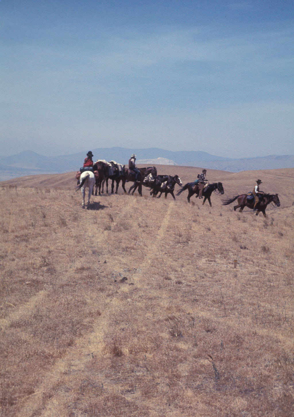 Vintage-Pacific-Crest-Trail-outdoor-Murray-family-horseback-ride-1