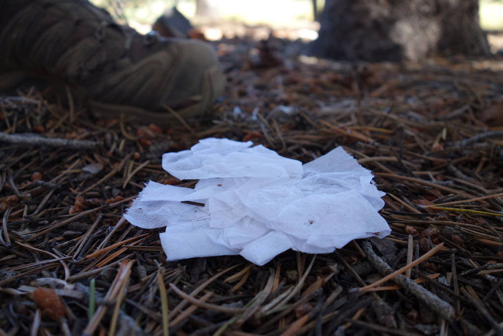 Please pack out your toilet paper. Our ranger friends spend far too much time picking it up. It's gross.