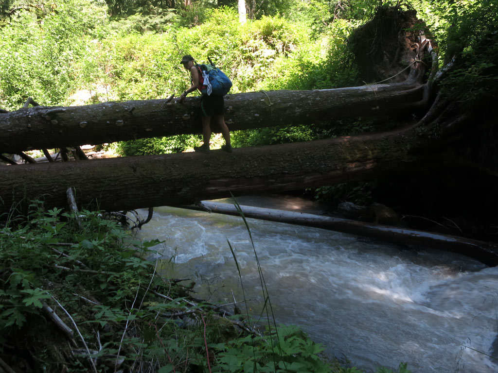 log-crossing-pct
