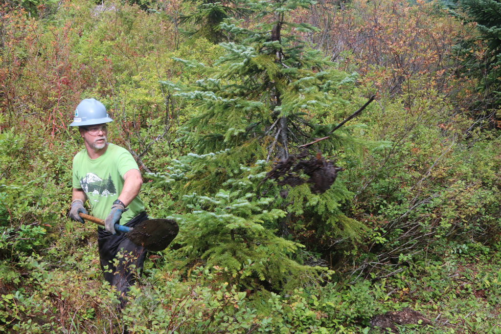 Volunteer crew leader Barry Teschlog shovels mud from a buried collection basin.