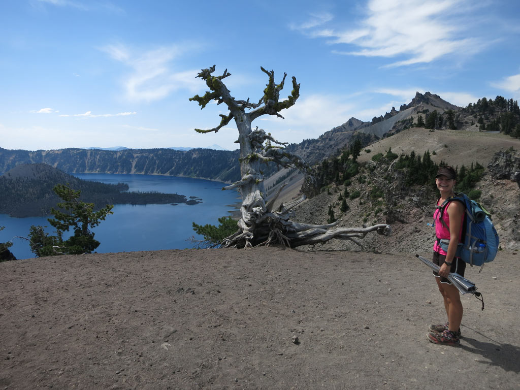 Dormouse at Crater Lake on a beautiful summer day.