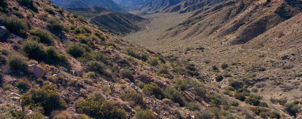 The Pacific Crest Trail in Sand to Snow National Monument. Photo by Carolyn Tepolt