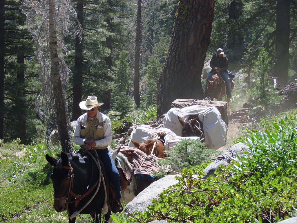 backcountry-horsemen-pacific-crest-trail