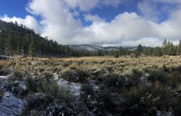 Help save Landers Meadow, a special place along the Pacific Crest Trail.