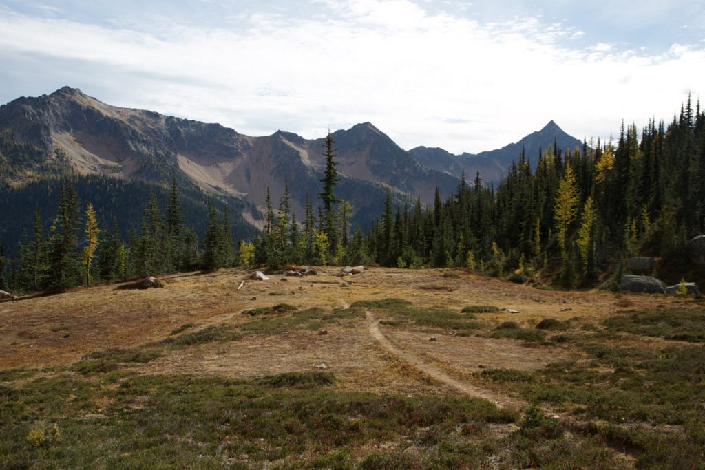 The Pacific Crest Trail at it's northern edge in the Pasayten Wilderness of northern Washington. Photo by Andrew Geweke