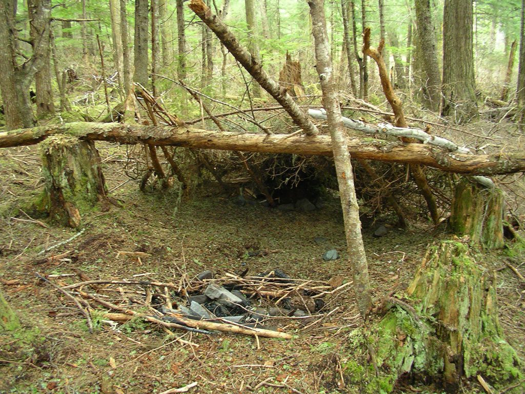 Survival shelter left behind in the forest.