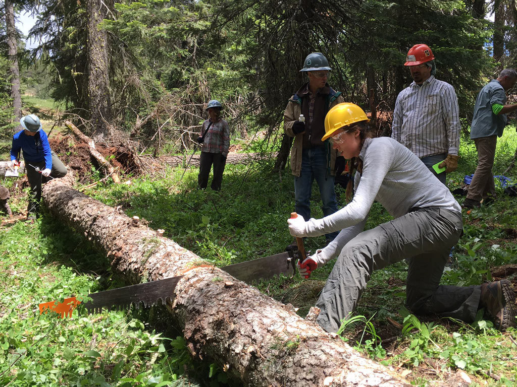 Volunteers learned how to clear trails with traditional crosscut saws. Photo by Ivan Rokos.
