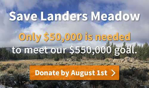save-landers-meadow