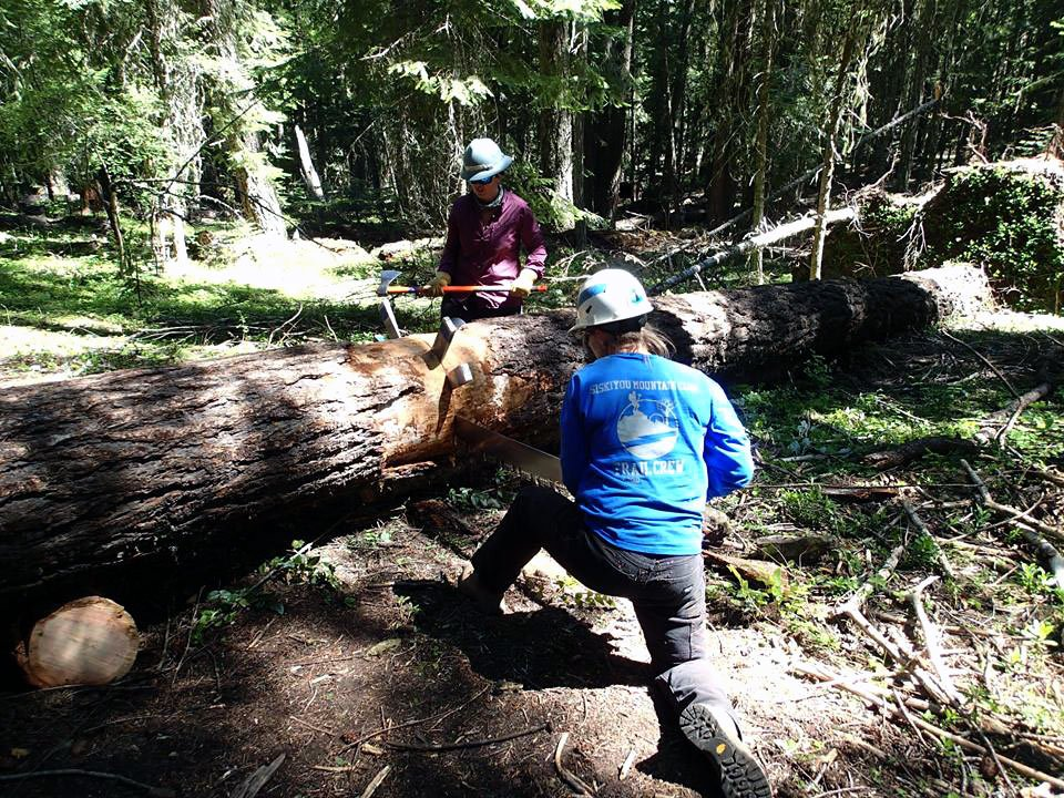 14 volunteer sawyers were certified to operate crosscut and chainsaws during the Trail Skills College weekend. Thank you to the volunteer sawyers and volunteer saw instructors for teaching these important skills.