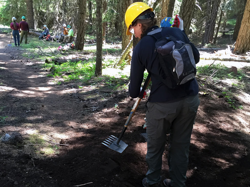 The McLeod is a common hand tool for trail maintenance. Here a volunteer is using a McLeod to tamp down dirt in a drainage feature.