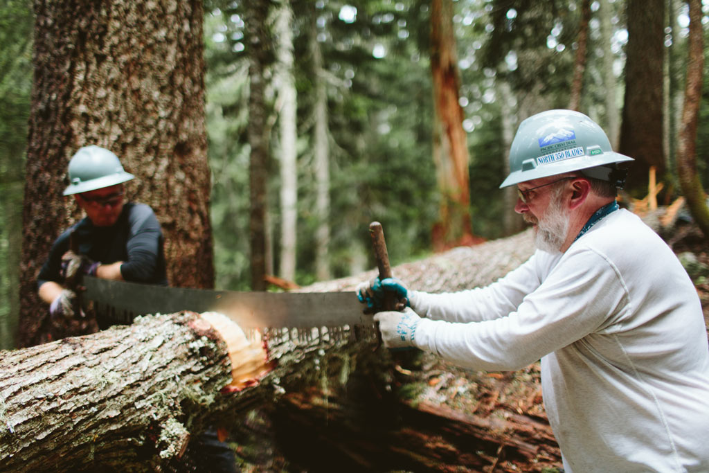 PCTA North 350 Blades use a crosscut saw on a tree to clear logs off the Pacific Crest Trail. Photo by Uphill Designs.