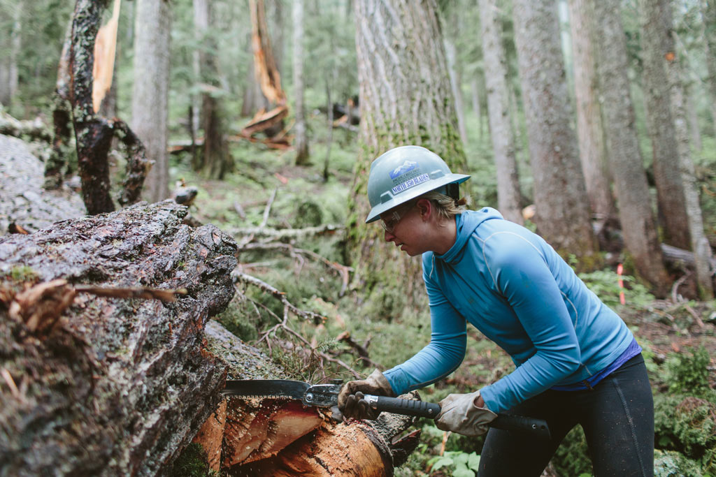 A volunteer from the Pacific Crest Trail Association North 350 Blades works on a tree that fell across the PCT. Photo by Dan Sedlacek of Uphill Designs.
