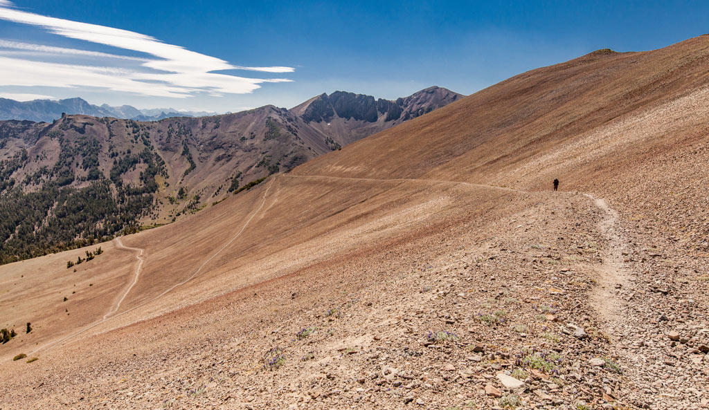Photo of the Pacific Crest Trail south of Sonora Pass. Photo by Martin Christian