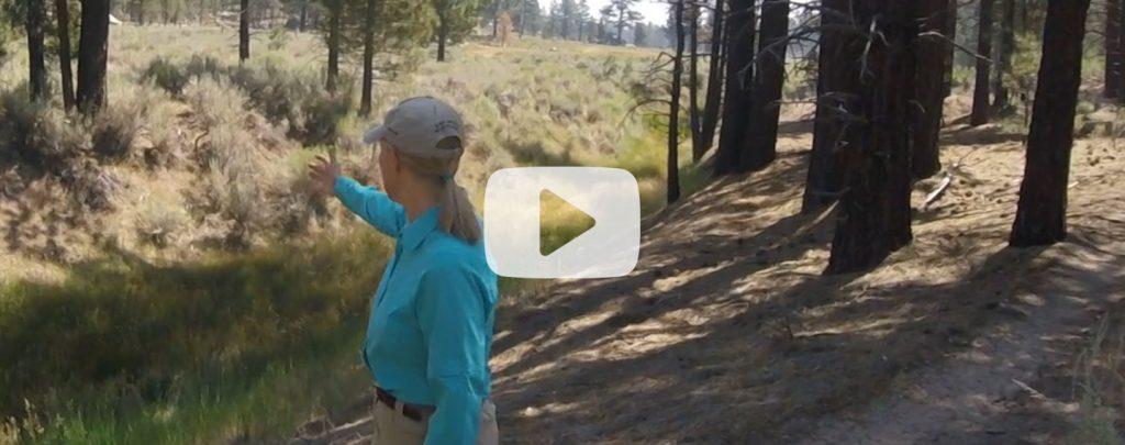 landers-viewshed-video-thumb