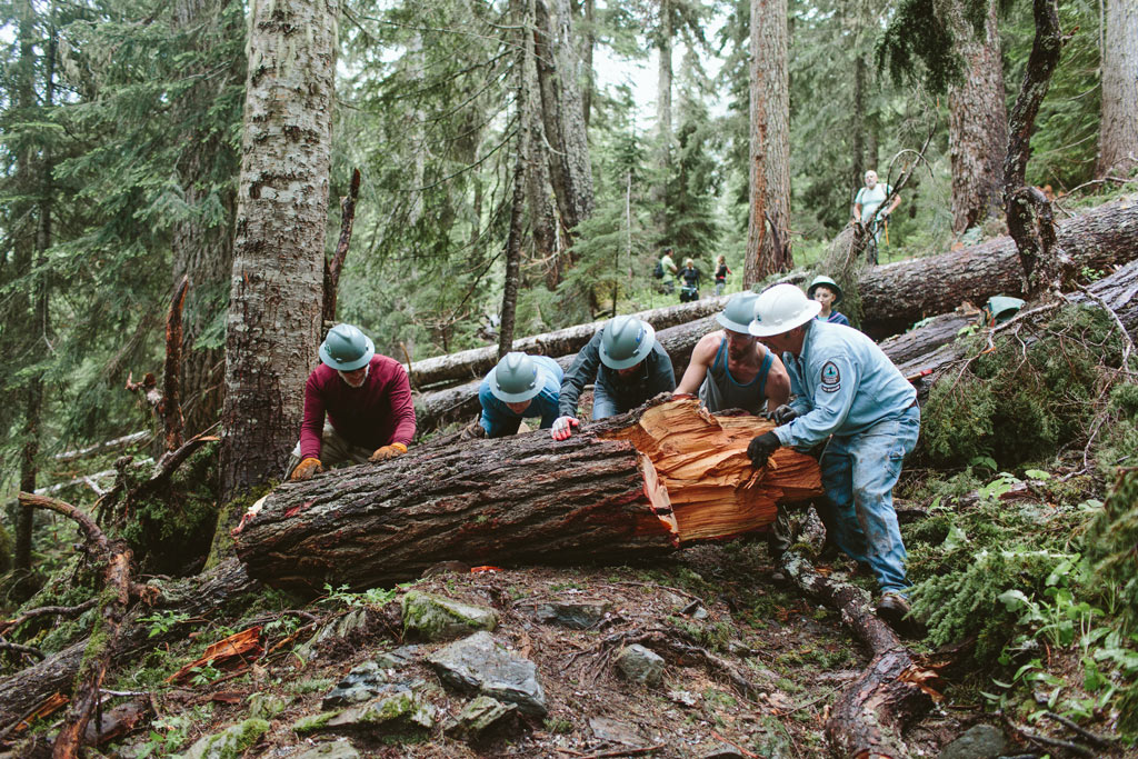 Volunteer trail crew doing logout on the Pacific Crest Trail in Washington gets a log rolling with a big push! Photo by Vincent Carabeo/Uphill Designs.