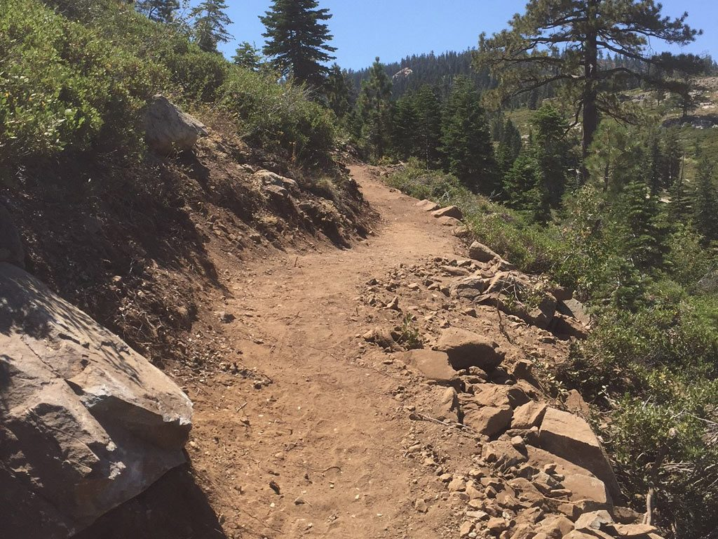 A little sample of the new Sierra Buttes section of PCT .