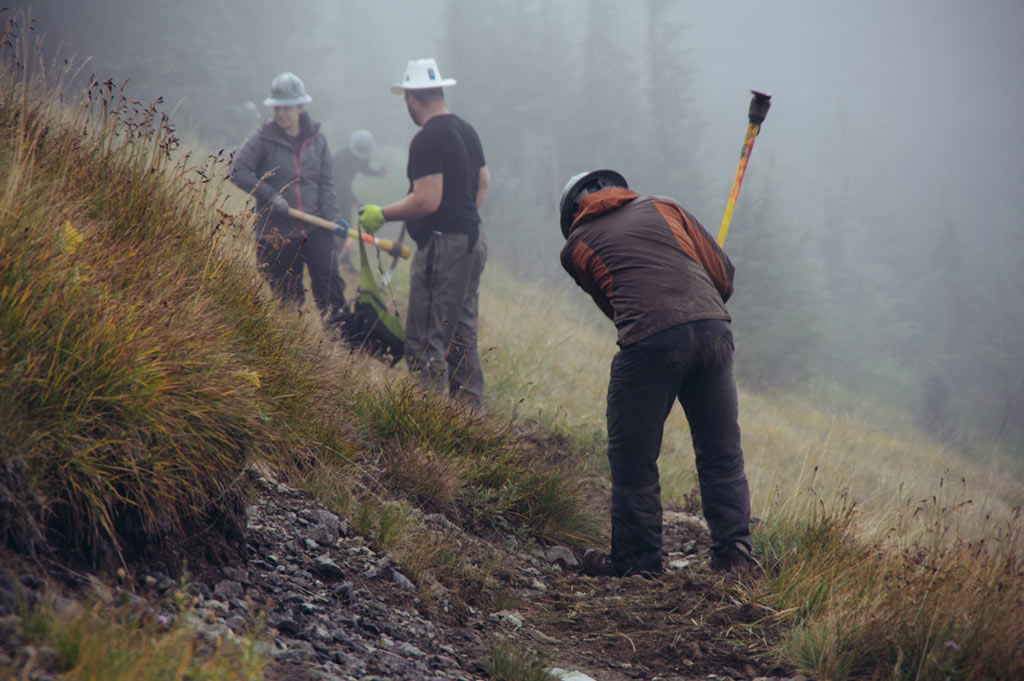 Volunteers hard at work north of Sheep Lake. Photo by Liz Donovan.