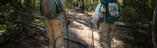 backpackers-hiking-through-a-forest-on-the-pacific-crest-trail