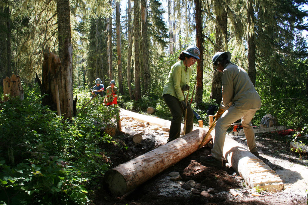 "Volunteers Christina Risa and Joan ""Blue Jay"" Tomlinson using team work to position a fresh log during construction of a turnpike extension in the Lemiti Meadows section of Oregon while crew leaders Jennica Tamler and Wes Jones plan the next step. Photo by Rik Williams"