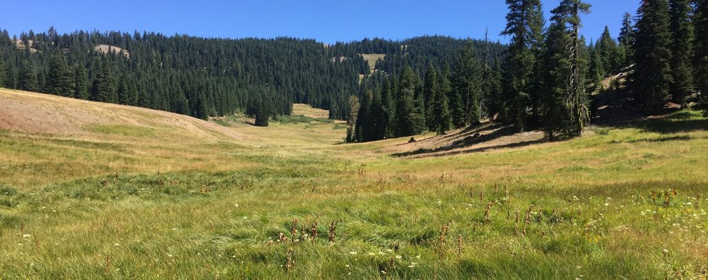 The Donomore Meadows property as you see it from the Pacific Crest Trail.