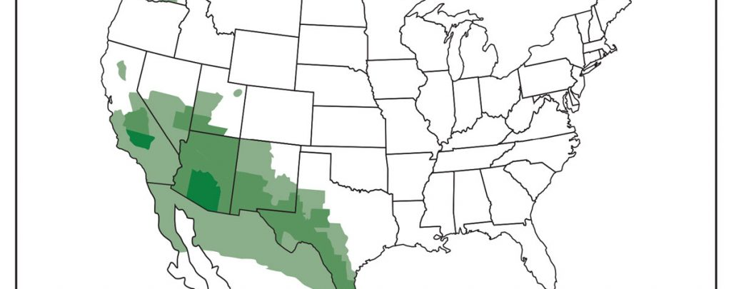 """Map of the approximate areas (""""endemic areas"""") where Coccidioides/Valley fever is known to live or is suspected to live in the United States and Mexico. Source: cdc.gov/fungal accessed on 12/23/16"""