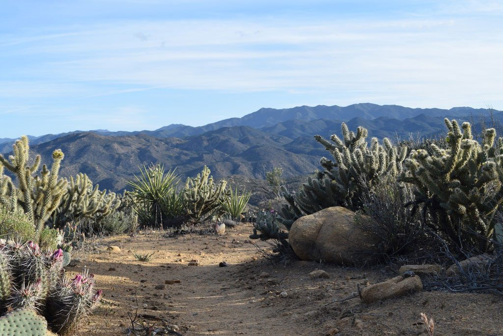 Hiking through the desert on the Pacific Crest Trail. Be prepared. Photo by Manny Forge.