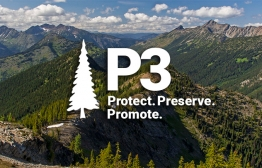 P3: Protect, Preserve, and Promote