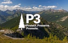 P3 - Protect Promote Preserve