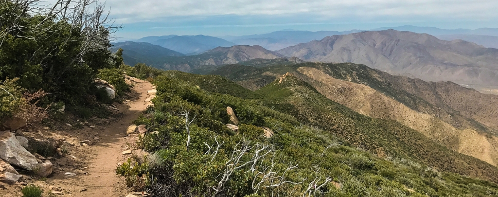 the PCT in Southern California