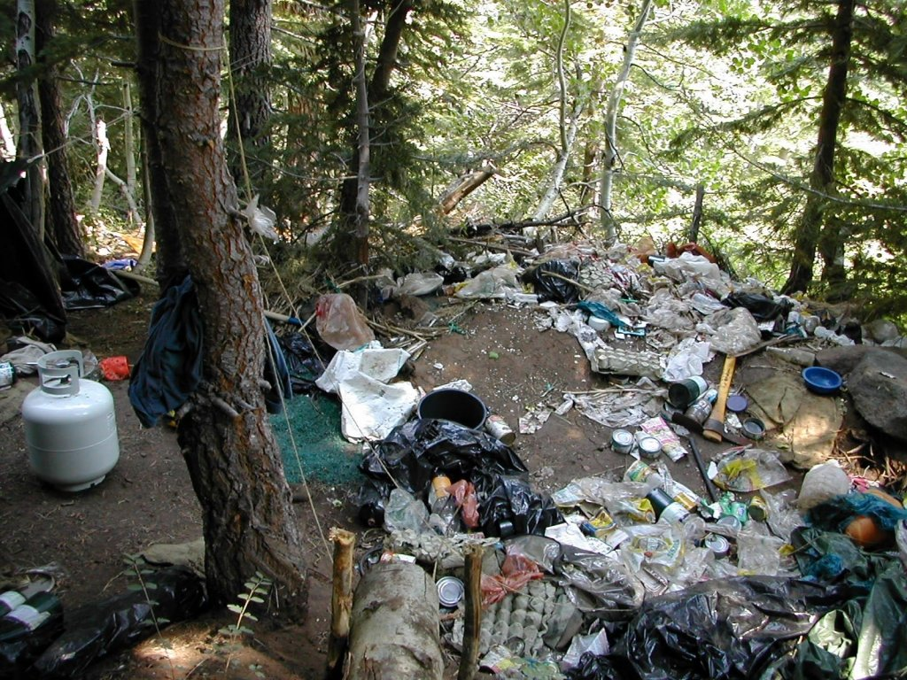 A small portion of the garbage and debris left in the forest at a drug trafficking organization's marijuana grow site on the Shasta-Trinity National Forest in California. (US Forest Service photo)