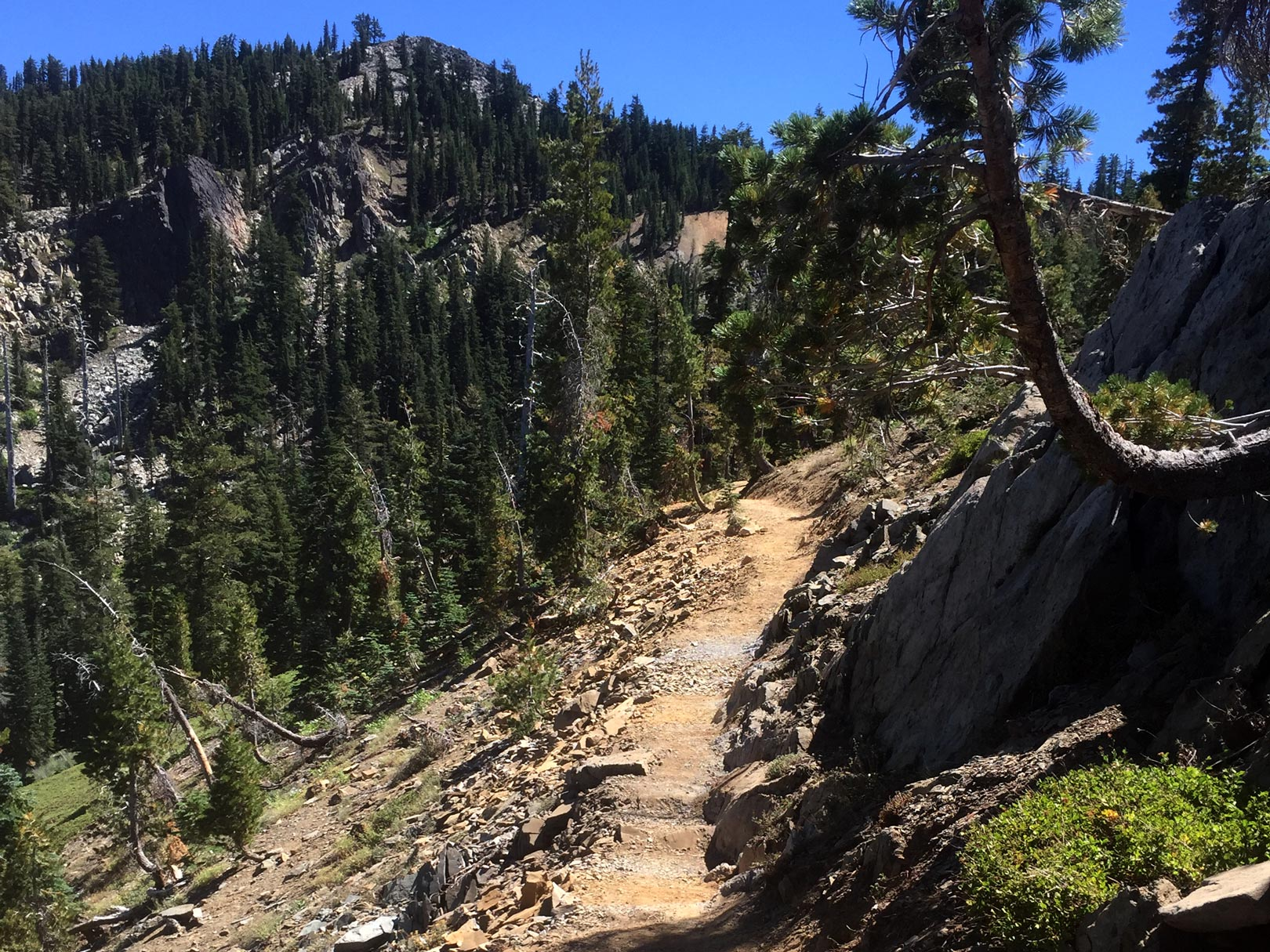 The new section of PCT in Sierra Buttes and Lakes Basin is fantastic. Photo by Conor Swift