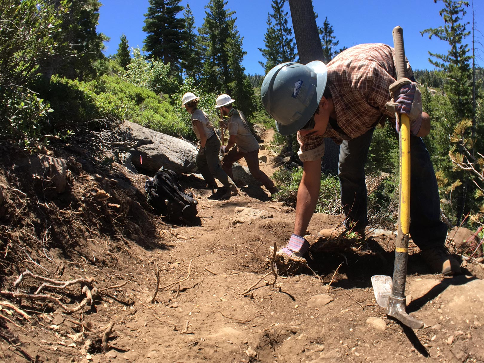Building this new section of PCT involved multiple years of pulling roots and rocks out of the ground. Photo by Clare Major.