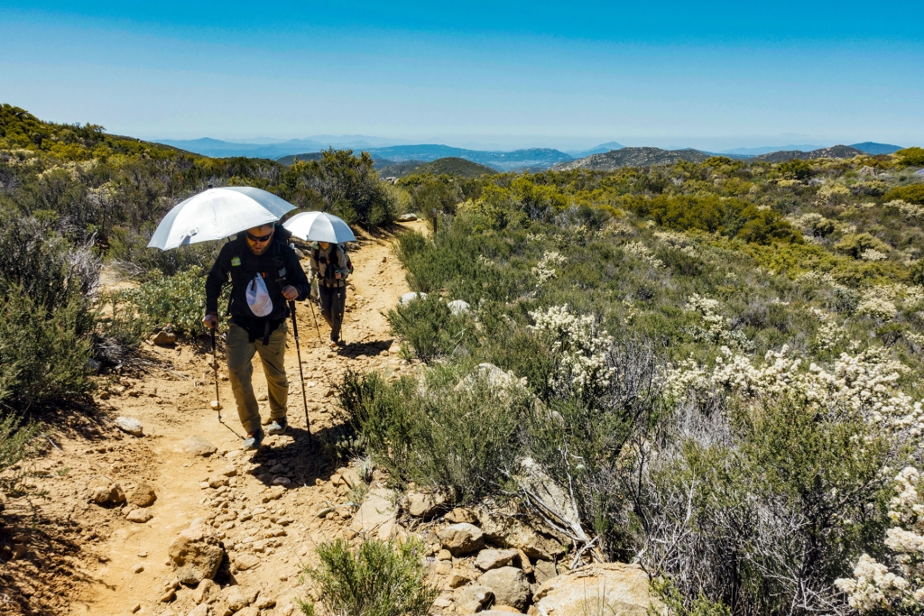 Hikers with umbrellas for shade under the blistering Southern California sun.